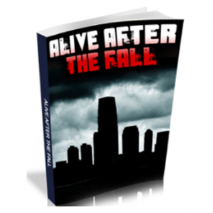 Alive After The Fall 2 Book